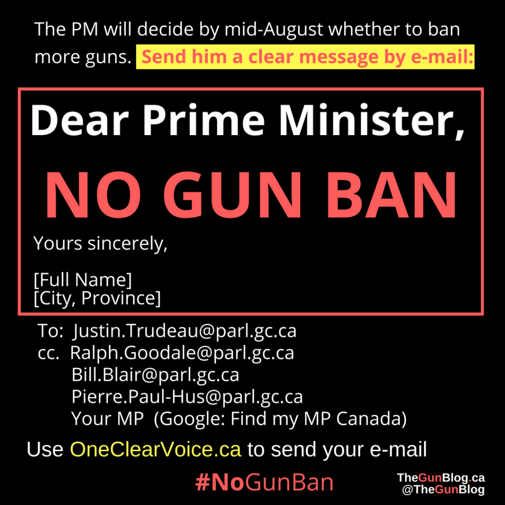No Gun Ban