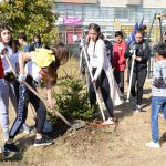 Students from Daut Bogujevci in Pristina plant trees provided through Boomer's Legacy